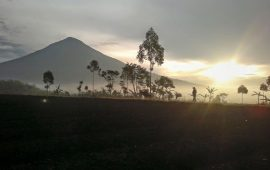 Rabu 23 September 2015 Gunung Cikuray Kebakaran