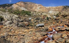 Sejarah Penetapan Cagar Alam Gunung Papandayan