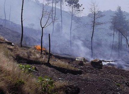 Hati-Hati Gunung Guntur Rawan Kebakaran