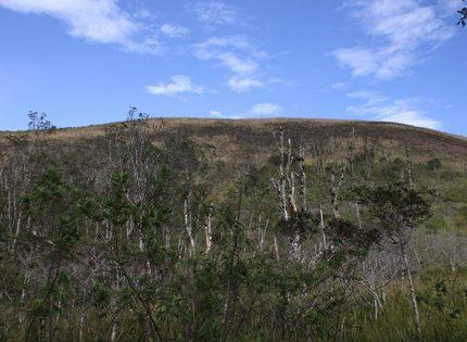 Save Gunung Guntur dan Gunung Papandayan