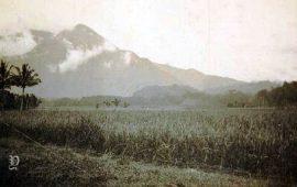 Gunung Guntur Tempo Doeloe
