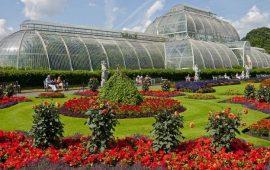 Kebun Raya Bogor Kebun Raya Tertua Di Dunia