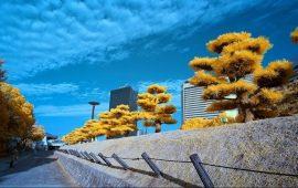 6 Tempat Wisata di Osaka Jepang yang Paling Terkenal