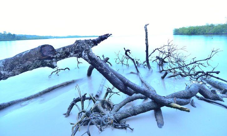 Kepulauan Mentawai-Surga Dari Barat Indonesia