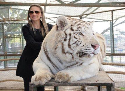 Lujan Zoo-Kebun Binatang Super Ekstrim di Kota Buenos Aires Argentina