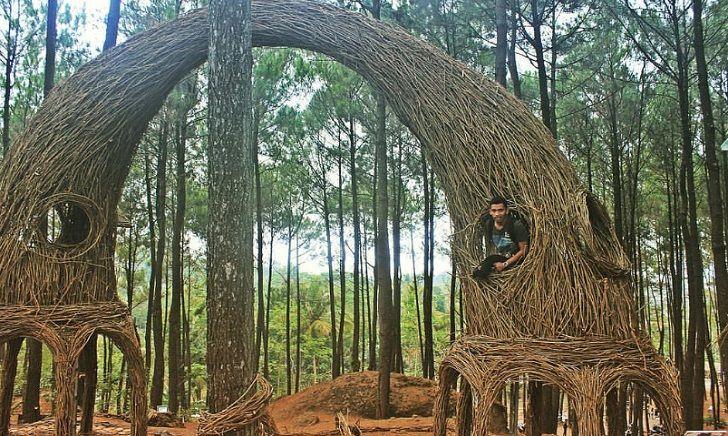 Tempat Hunting Foto di Jogja Dengan Spot yang Bagus