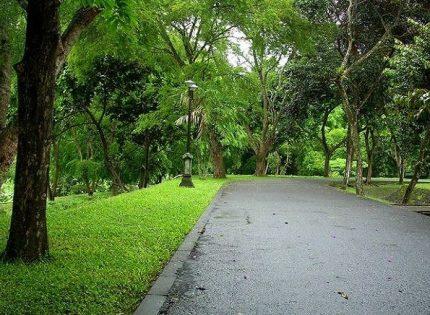 Tempat Wisata Alam di Jabodetabek Murah dan Dekat Stasiun