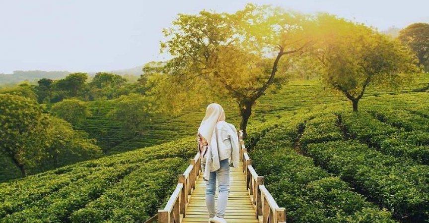 Tempat Wisata Di Blitar Terbaru Menarik Yang Wajib Dikunjungi Pagguci