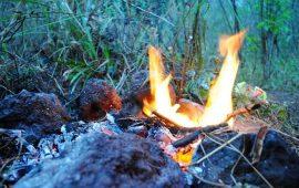 Kebakaran – Pendakian Gunung Guntur di Tutup Sementara