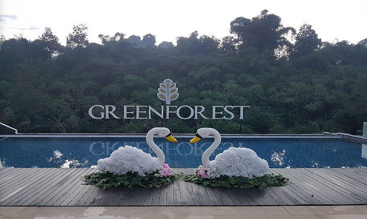 Kolam Renang The Green Forest Resort