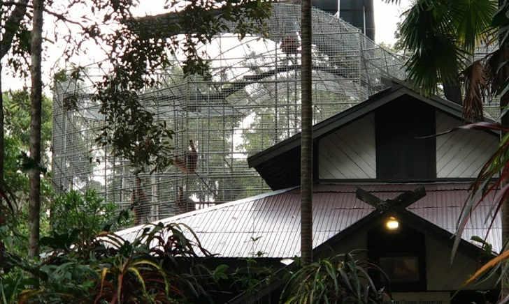Tiket Masuk Arboretum Nyaru Menteng