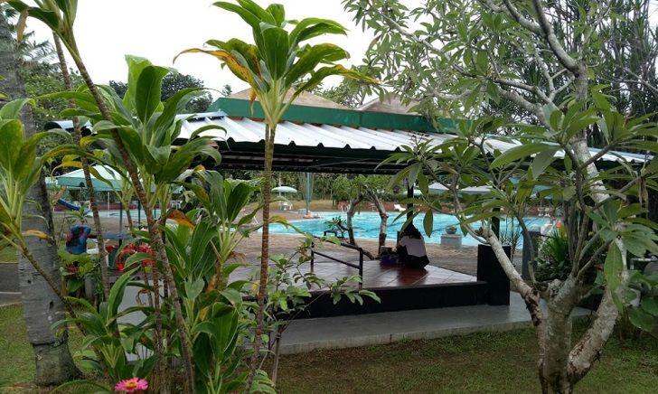 Tanaman Di Sekitar Kolam Renang Villa Duta